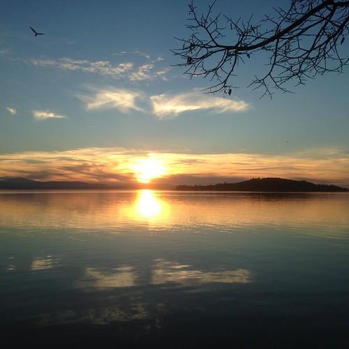 #umbria #igersitalia #trasimeno #sunset #igersumbria #italia #trasimenolake #volgoumbria #sunsets #lago #lagotrasimeno #loves_umbria #photooftheday #skylovers #clouds #ig_umbria #sunset_pics #sunsetlovers #loves_united_umbria #ig_italia #followme #nofilte