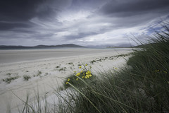 Horgabost (Malajusted1) Tags: horgabost isle harris lewis beach seascape marram grass mountains outer hebrides clouds western isles highlands scotland tarbert west