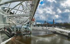 London Calling (Froschknig Photos) Tags: london calling londoncalling michau froschknigphotos eye londoneye themse thames big ben bigben waterloo 6000 a6000 ilce6000 sonyalpha6000 2016 sel16f28 vclecf1 fisheye fischauge