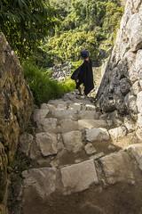 those Inca's stairs (Gu Photography) Tags: machu picchu peru travel moments kurnykstukaigyvena guphotography canon shot stairs steep nature harmony peace love gowonder backpaking trail trek hike saudo amerika southamerica aguascalientes