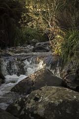 Stream.. (A blond-Tess) Tags: stream creak water rocks light naturephotography ou outdoorphotography outdoor scotland glentrool dumfriesandgalloway september hike septemberhike