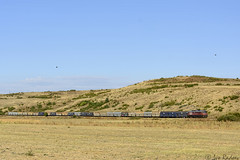 Heavy coal (Rivo 23) Tags: bdz cargo bulgarian state railways diesel locomotive class 07 059 ludmilla 5d49 engine coal train simeonovgrad bulgaria
