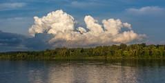 _DSC0029 (johnjmurphyiii) Tags: 06416 clouds connecticut connecticutriver cromwell originalnef riverroad sky summer tamron18270 usa johnjmurphyiii