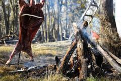 Almuerzo (Fueguino de hace poco) Tags: cordero almuerzo tolhuin argentina asado fuego tierradelfuego criollo gaucho cocido asar
