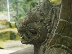 P9270082 (tonkonogov) Tags: indonesia bali ubud