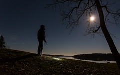 Moonlit Walk (Terry L Richmond) Tags: moonlight moon leaves sky night flashlight stars blue longexposure nightsky canon6d canon1740 alberta