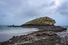 Spirits Bay Beach-3