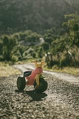 Toys we did take you into the future? (ehanoglu) Tags: toys bike motorcycle motorbike road way future nature landscape ebinkarahisar ebin giresun child children play turkey trkiye emrehanoglu emrehanolu emre hanolu