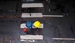 Drizzle Drazzle Sunday 3 of 5 (Orbmiser) Tags: 55200vr autumn d90 fall nikon oregon portland rain raindrops raining pedistrain umbrella crosswalk