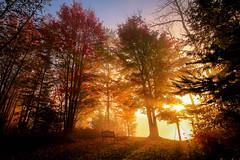 Autumn Sunrise (sdl39hogger) Tags: autumnsunrise goldenhour autumn sunrise wisconsin winter sawyercounty lakewinter nationalgeographic