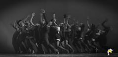 Eles Bailarinos (Marcelo Seixas) Tags: mulher linda maravilha dancing cabaret beautiful lovely cady action dance ballerina art arte jazz clssicos broadway class performace poise balerina balance artistic woman star show apresentao boavista boa roraima espetculo ballet moderno balletmoderno performances students aluna ballo bal bailariana bailarino ballerino palco light perfect perfeito perfeio musculos muscles young jovem dana danze danza tanz tones tons surreal wow canon girl love people photo photography ciajmjazz profissional professional balet baletka baletki baletky balletslippers ballerinas balett