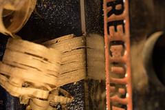 Edge Cut (votsek) Tags: 2016 macro macromonday edge plane record handtool oak cutting sigma50mm nikond750 jointing