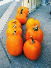 Color splashing pumpkins (Stardustrose22) Tags: unionsquare farmersmarket nyc street food vegetables pumpkins orange blackandwhite colorsplash