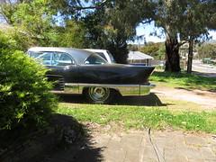 1957 Cadillac Eldorado (RS 1990) Tags: adelaide southaustralia thursday 13th october 2016 1957cadillac eldorado car rare american import black uncommon wrightrd modbury teatreegully