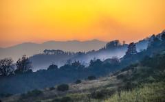 Evening smoke on the hills (Massimo Saviotti) Tags: flickr backlight collina colline controluce evening hill hills landscape landscapes paesaggi paesaggio panorama sera sightseen sunset tramonto vista
