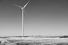 maverick (Rainer ) Tags: windenergie windenergy windkraftanlage aerogenerador windturbine industriesthetik industrialaesthetic iberischemeseta castilla kastilienlen espaa spanien spain espagne sw bn bw sommer2016 rainer