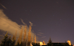 Starry sky (Una S) Tags: trees sky canada calgary night clouds stars rooftops neighborhood alberta