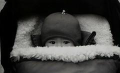 Taika (Dominica69) Tags: berlin film 35mm eyes pen