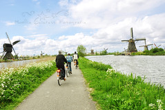 (Monica Galafassi's Photos) Tags: holland mill netherlands beautiful bike wind path bicicleta lindo lovely caminho moinho fiets kindedijk