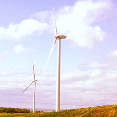 Wind Turbines near Tanton & Seamer (h e n r  y) Tags: square wind squareformat nectar walden windturbine windfarms beaut renewableenergy iphoneography instagramapp uploaded:by=instagram