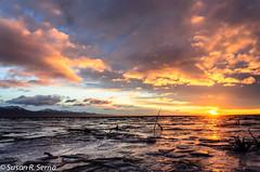Winter Sunset (SusanRSerna) Tags: winter sunset sun mountains ice nature alaska anchorage turnagainarm wildliferefuge cookinlet acwr d7000 acwrwinter