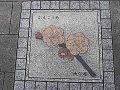 Tokyo, Japan // 花の輪 大分県 ぶんごうめ (Ricardobtg) Tags: cosina voigtlander olympus m nokton 43 omd 175 m43 175mm em5 豊後梅