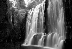 Guide falls. Tassie (Stingsie) Tags: blackandwhite nature waterfall tasmania guidefalls 13weddinganniversary