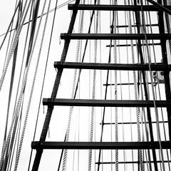Belem, shroug and cables (S amo) Tags: yard sailing ship cable belem rig shroud mast bateau rigging voilier sailingship cini mt foremast hauban filin oldsailingship greement vieuxgreement mture vergue giorgiocini