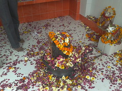 2013-03-09 13.03.13 (ravi bhalla2012) Tags: shiv bholenath