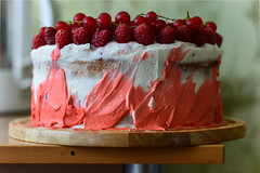 (ola_alexeeva) Tags:  cake watercolor homemade    raspberry    red