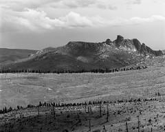 Sheeprock - Pike National Forest (koni-omegaman) Tags: usa colorado landscape 4x5 blackandwhite film kodak supergraphic wollensak raptar tmy ei200 ddx drum