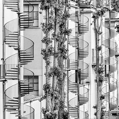 DSC_7758-7 (deborahb0cch1) Tags: stairs blackandwhite monochrome building outdoor architecture city spirals spiral staircase spiralstaircase geometric abstract pattern