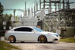 Acura TL | VRC13