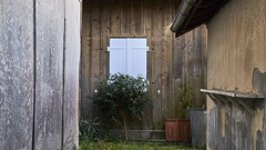 (thierrylothon) Tags: fuji fujinonxf35f2rwr fujixpro2 aquitaine gironde presquilecapferret piraillan phaseone captureonepro c1pro publication flickr fluxapple closeup nature architecture graphisme