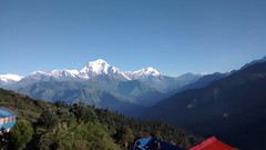 Dhaulagiri (Hoodoo Doctor) Tags: dhaulagiri snowcapped himalayas nepal ghorepani