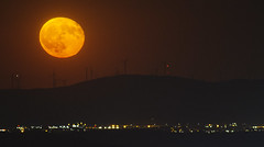 Altamont Pass (Davor Desancic) Tags: altamontpass moonrise california ebparksok moon windmill livermore