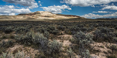 Hillocks of History (Brian Truono Photography) Tags: cenozoic fossilbutte hdr highdynamicrange nps nationalpark nationalparkservice wyoming bushes clouds desert erosion exposureblending formation geology hills landscape natural nature plateau rock sedimentary shrubs sky stone