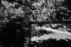 Abstract (Sersio_Photographer) Tags: corua del conde fotografodecoruadelconde fotos con vaselina