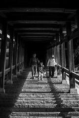 Nara B/W (3) - Three Generations (Patrick Vierthaler) Tags:   todaiji toudaiji nara park japan kansai bw monochrome