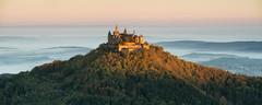 Hohenzollern Castle (Tobias Knoch) Tags: sony a7r canon 70200mm gitzo 2452los traveler novoflex cb3ii hohenzollern germany autumn herbst castle burg schwaben sunrise sonnenaufgang fog nebel