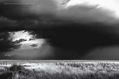 Storm's Prairie (Chains of Pace) Tags: oklahoma panhandle prairie clouds western weather landscape nature storm rural blackandwhite