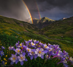 Paradise Valley (Candace Dyar Photography) Tags: san juan mountains colorado double rainbow columbines peaks summer storm wildflowers clear lake candace dyar photography landscape