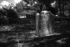 Baby Earle (PositiveAboutNegatives) Tags: leica leitz sl leicaflex leicaflexsl film analog efke bw blackandwhite headstone grave cemetery plot coolscan florida nikon9000scanner leicar 35mmelmarit