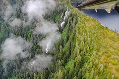 These photos don't do justice (erinwilt) Tags: alaska ak pilot nature outdoors misty fjords beautiful wildlife flying flight aeroplane airplanes canon rebel photography canonrebelphotography redhead adobe photoshop national monument forest trees woods tongass plane floatplane copilot smile people denali ketchikan clouds water sea ocean glaciers glacial valley mountains mountain range colorful inspiration nikon inspirational amazing landscape waterfalls rain storm jet jetplane airforce airman air cloud weather