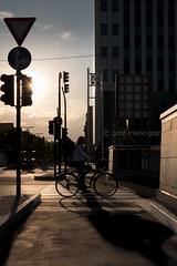 Biking to work (Mario Graziano) Tags: torino turin piedmont piemonte italy italia italian city citt citta bicycle bici bicicletta bike biking golden goldenhour ora oradoro visitpiedmont visitpiedmontitaly