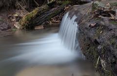 P1150142 (TallGrass-IA) Tags: edgewood iowa unitedstates us panasonic g6 1235 lumix micro43 microfourthirds waterfalls longexposure hiking outdoor nature moss