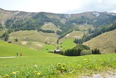 DSC_3829 (d90-fan) Tags: rauris raurisertal natur alpen salzburgerland österreich nationalpark npht hohe tauern wandern krumltal seidlwinkeltal