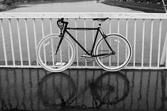 IMG_2376 (azaksek) Tags: bike bicycle fixie fixed urban city ride bridge river rain reflection cold autumn osijek croatia canon blackwhite bw