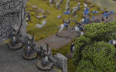 Armies on Parade 2016 (brush.stroke77) Tags: dol amroth lordoftherings lotr gamesworkshop armiesonparade