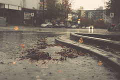Chizzly (charhedman - off for a few days) Tags: storm autumn lonsdaleavenue northvancouver street water rain curb leaves lights